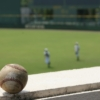 令和3年度春季東北地区高校野球秋田県大会組み合わせ決定!